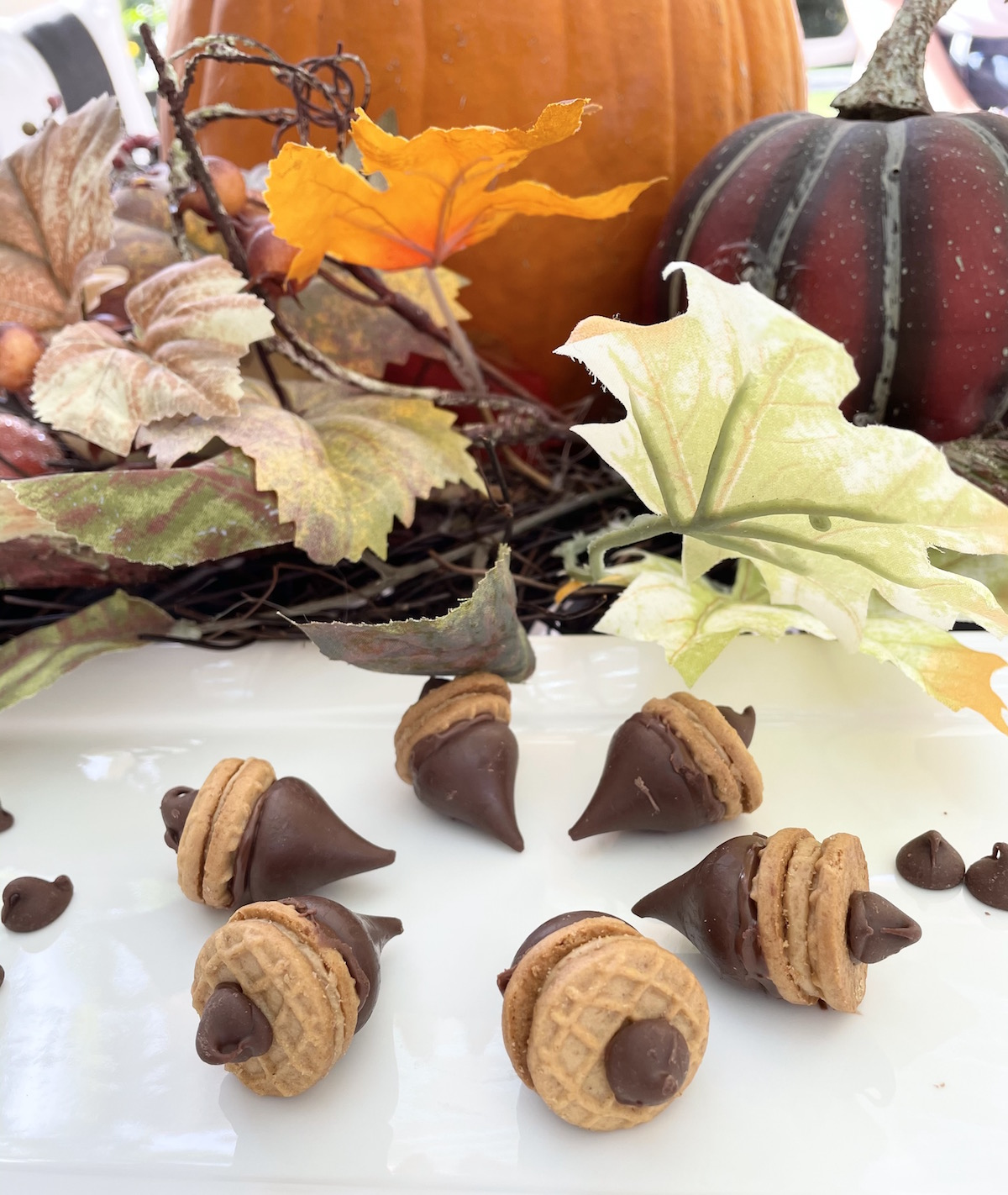 Adorable Acorn Cookie Recipe That Your Friends & Family Will Love